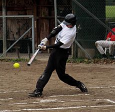 Softball batter vh