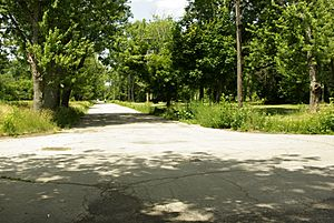 Abandoned Streets in Love Canal