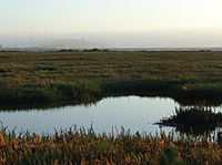 Emeryville mudflats distant San Francisco