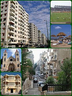 A Collage of Latakia