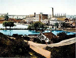 The Chemical Works at Dartford circa 1896 Wellcome L0021381