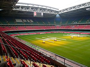 Inside the Millennium Stadium, Cardiff