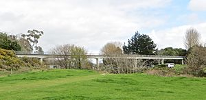 Sewer bridge at Tauhara Gully, Hamilton