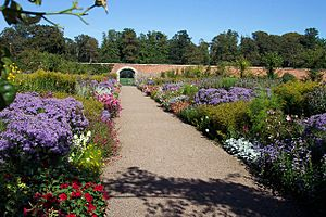 Herbaceous border in the walled garden at Floors Castle. - geograph.org.uk - 286913