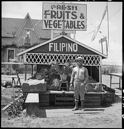 San Lorenzo, California. Fruit and vegetable stand on highway operated by Filipino. This year he . . . - NARA - 537768