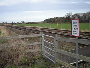Stop, look and listen - Beware of the trains. - geograph.org.uk - 651260