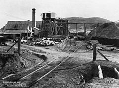 StateLibQld 1 64439 Day Dawn Block and Wyndham Mines in the Charters Towers district, 1897