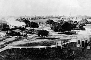 University Avenue at the Circle with train steaming toward El Palo Alto, 1894