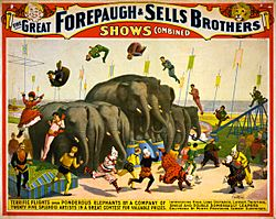 Flickr - …trialsanderrors - Terrific flights over ponderous elephants, poster for Forepaugh ^ Sells Brothers, ca. 1899