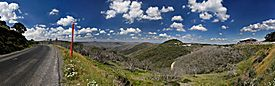Mt hotham summer scenery