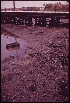 OIL-SOAKED MUD LINES INDUSTRIAL CANAL IN GRAVESEND BAY AREA OF BROOKLYN - NARA - 547897