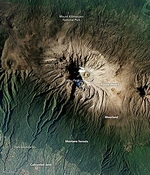 Kilimanjaro from space 2016