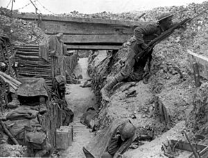 A British trench near the Albert-Bapaume road at Ovillers-La Boisselle, July 1916 during the Battle of the Somme. The men are from A Company, 11th Battalion, The Cheshire Regiment.