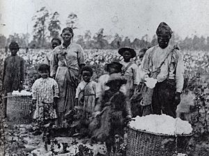 Family of slaves in Georgia, circa 1850
