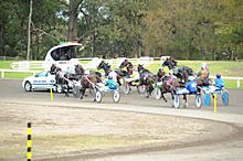 Harness racing at Fairfield Showground