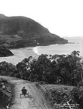 Stanwell Park Beach from The Powerhouse Museum