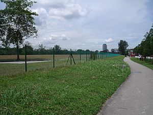Chain link fence surrounding a field in Jurong, Singapore