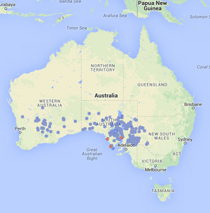 Distribution of bolam's mouse in Australia