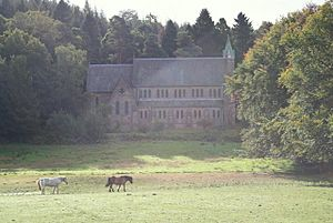 Ponies by St Margaret's Church, Aberlour - geograph.org.uk - 1504695.jpg