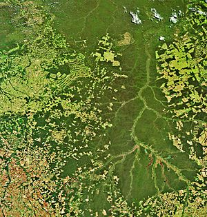 The Xingu River in Brazil captured by Envisat ESA228660