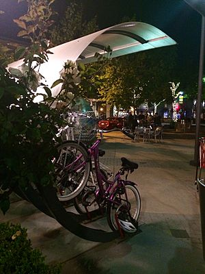 Bike Arcs-Lytton Plaza-Palo Alto, CA 2014-05-18 21-24