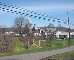 View of Wapwallopen, Pennsylvania